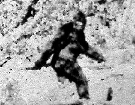 FOX NEWS: Bigfoot sightings: 8 best states to see the legendary Sasquatch