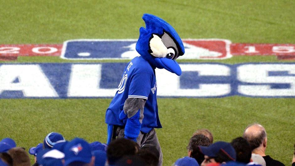 Blue Jays được miễn đào tạo tại Toronto
