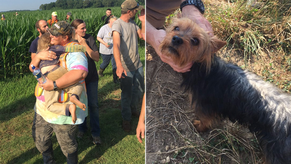 Missing 3-year-old girl found in Missouri cornfield with dog by her side