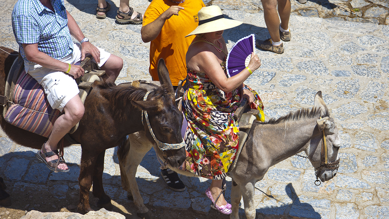 Greek island of Santorini bans 'obese' tourists from riding donkeys