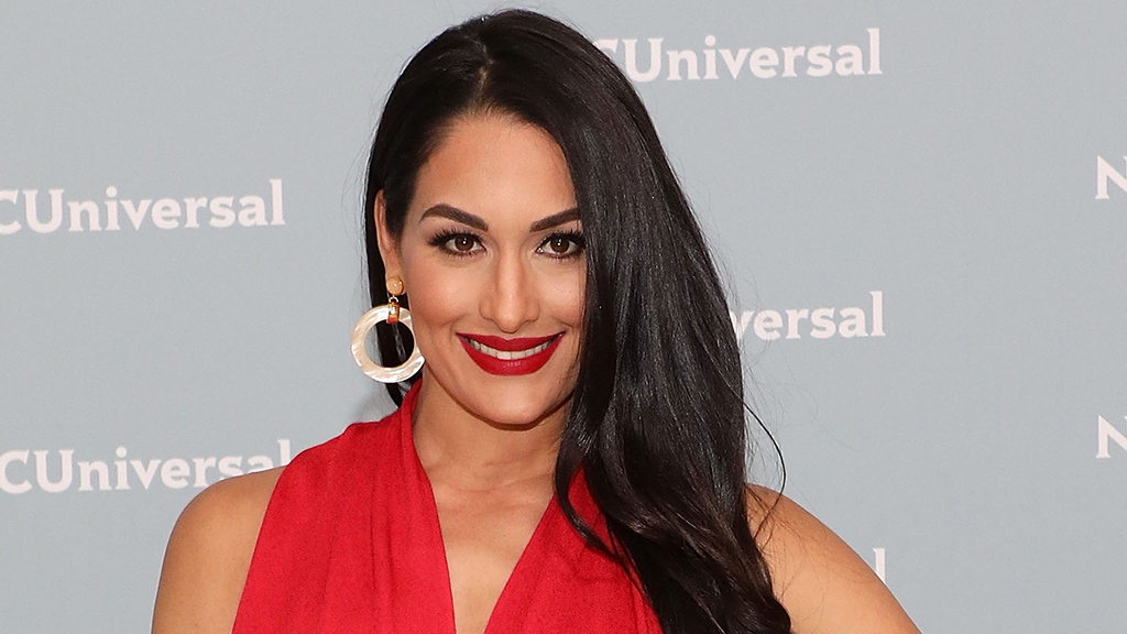 Nikki Bella catches 'political' backlash after promoting new Dwayne 'The Rock' Johnson book – Fox News