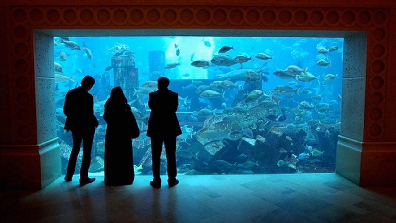 Atlantis Resorts plans world's most expensive resort in Hawaii