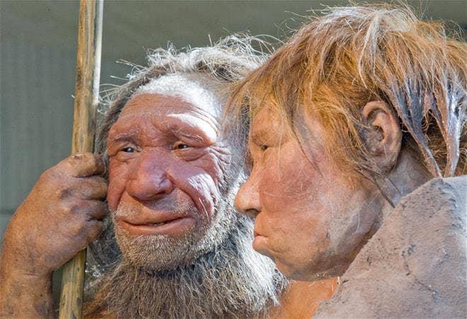 Neandertaler beachcombers Tauchen ging, für Muscheln, entdecken Wissenschaftler