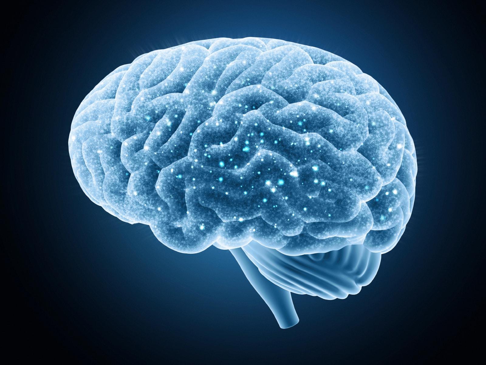 Scientists identify 'ground zero' for Alzheimer's disease