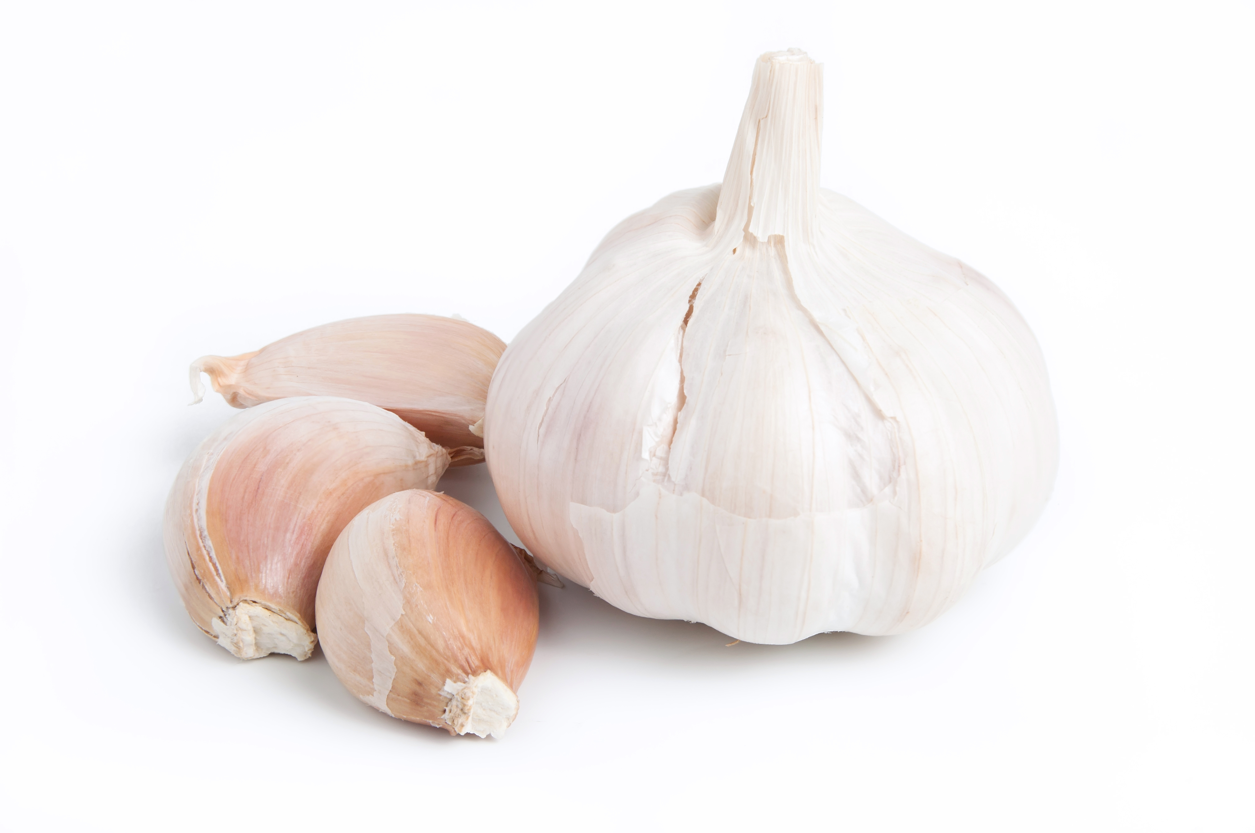 The quickest (and only) way to get rid of garlic breath