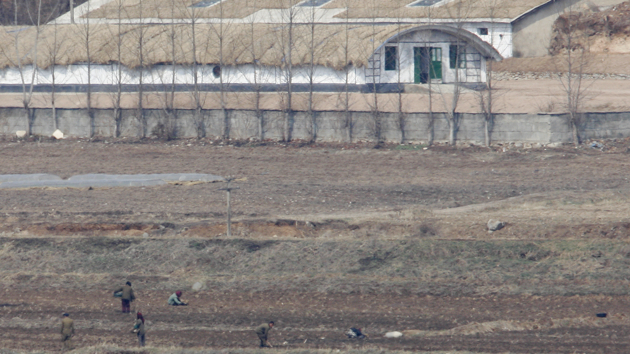 North Korea's forced abortions: The Hermit Kingdom's underreported human rights abuses thumbnail