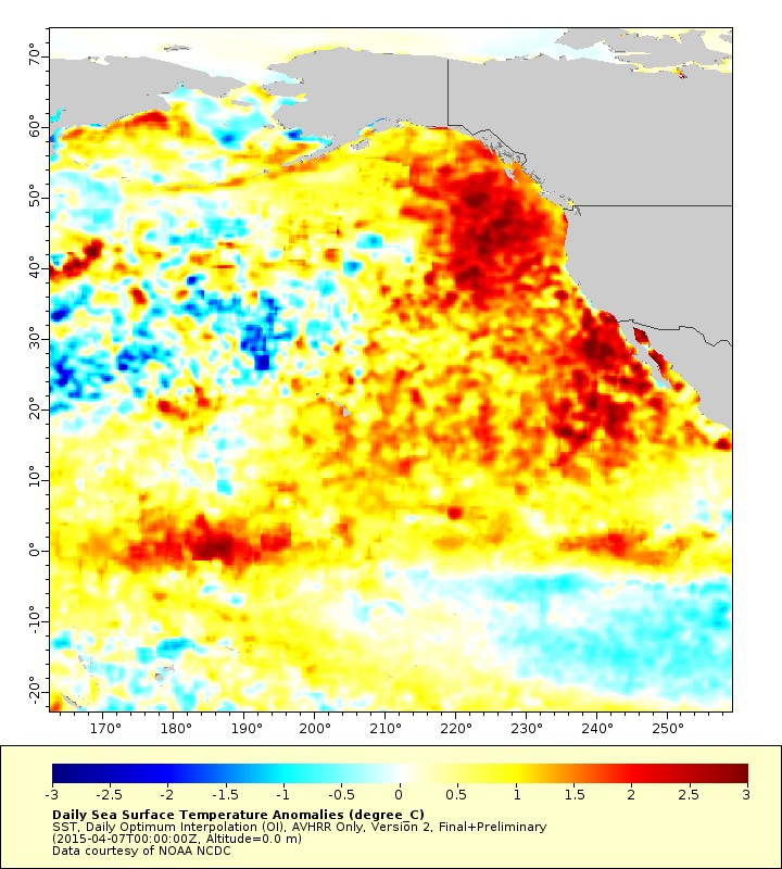'The blob' in Pacific Ocean linked to spike in ozone