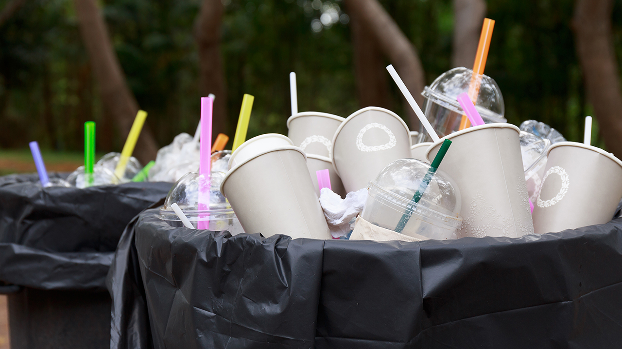 Westlake Legal Group plastic-straws Leslie Marshall: Trump is wrong about plastic straws – They really do cause problems Leslie Marshall fox-news/us/environment fox-news/science/planet-earth/pollution fox-news/politics fox-news/person/donald-trump fox-news/opinion fox news fnc/opinion fnc article 0f05b6d5-d6eb-551a-99ee-9e07e84352b5
