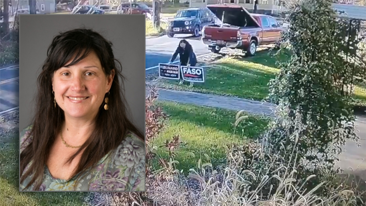 New York professor caught on camera stealing GOP yard signs