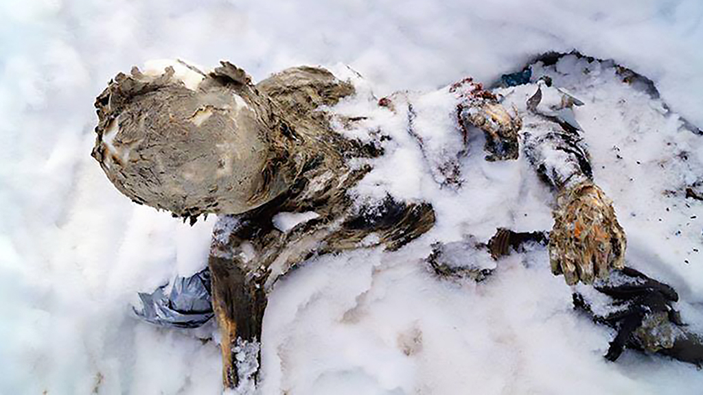 Mummified bodies of climbers found buried in ice on Mexico's highest volcano 59 years later