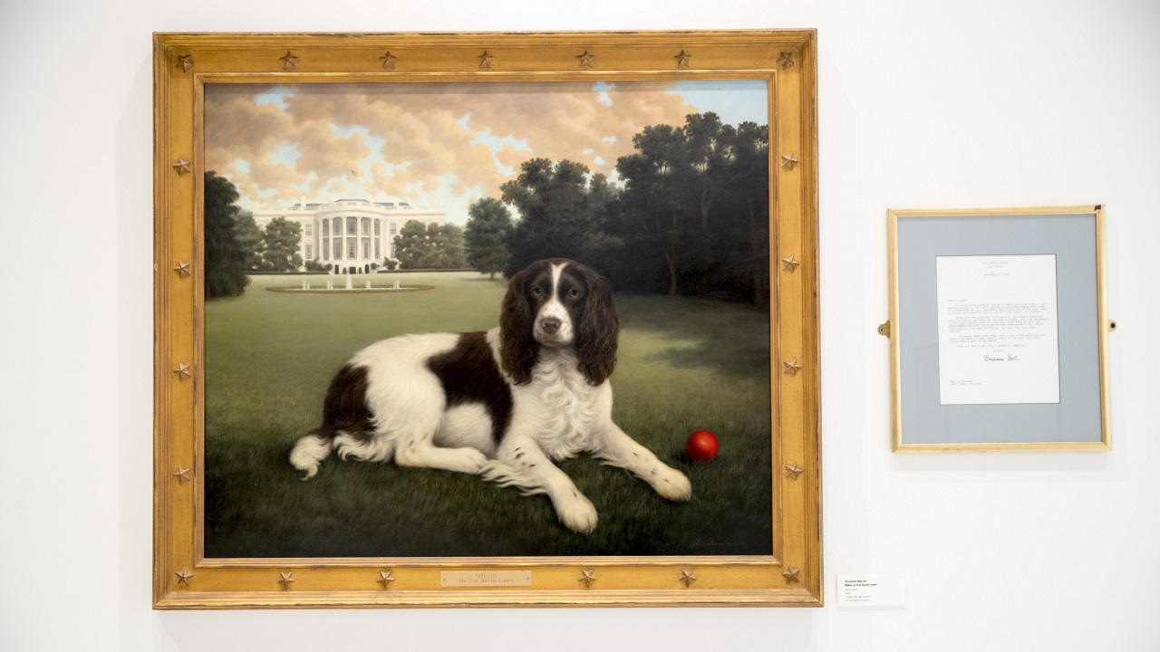 American Kennel Club's dog museum, relocated to New York, will unleash 150 pieces showcasing furry friends