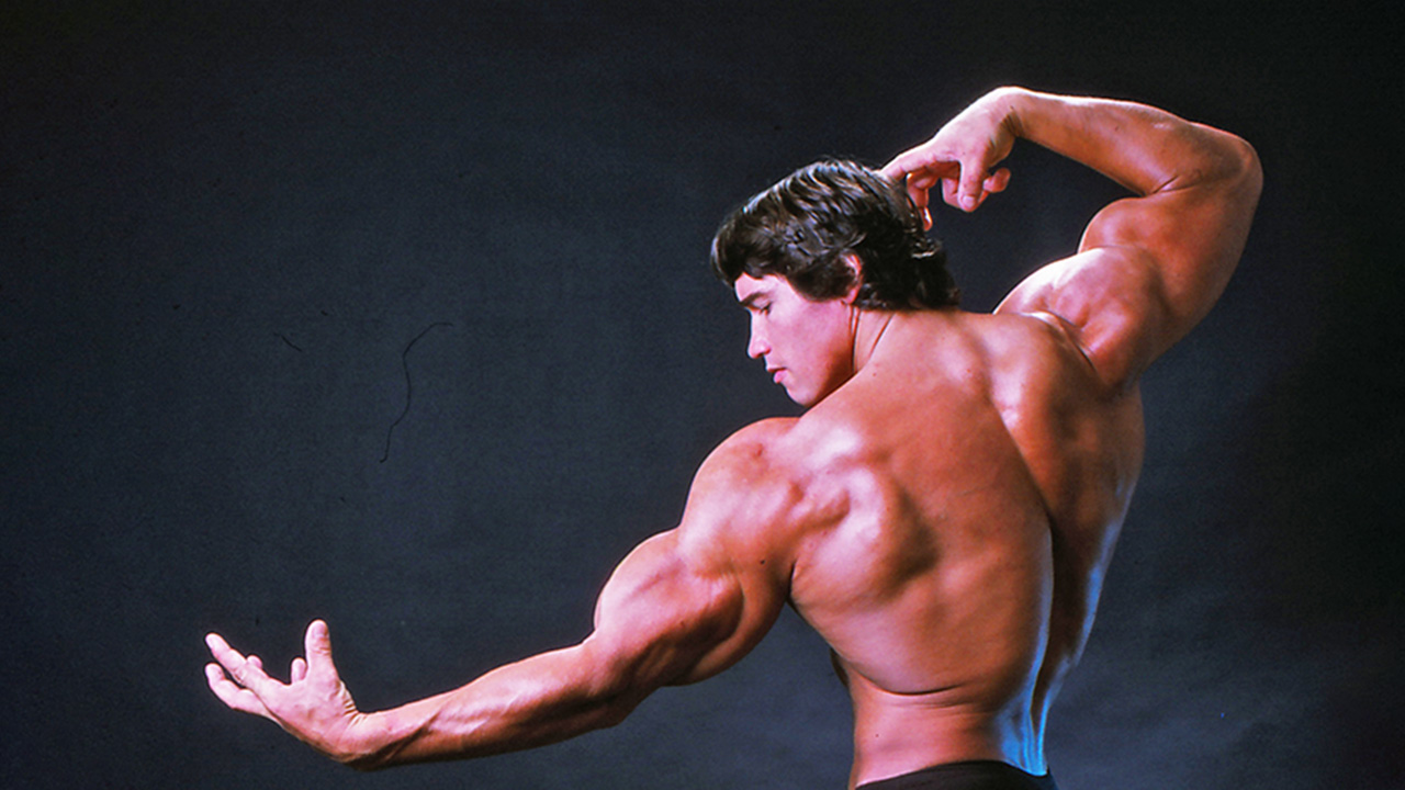 Arnold Schwarzenegger's son recreates his father's famous bodybuilding pose