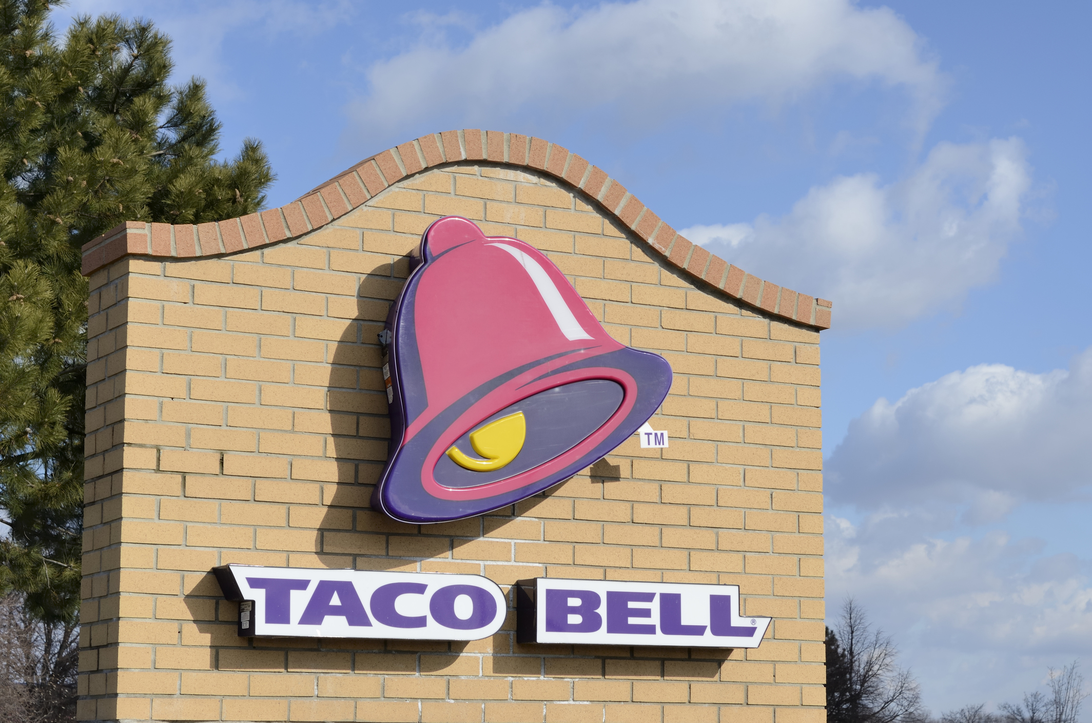 Taco Bell plans to test vegetarian menu this year