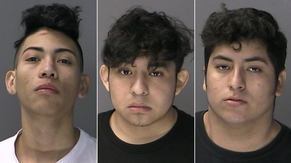 MS-13 members charged in New York brawl let go from ICE custody by federal judges before attack, officials say