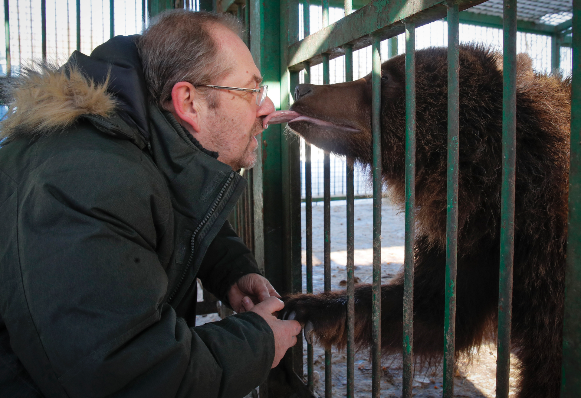 Wild animals get care at private Russian center