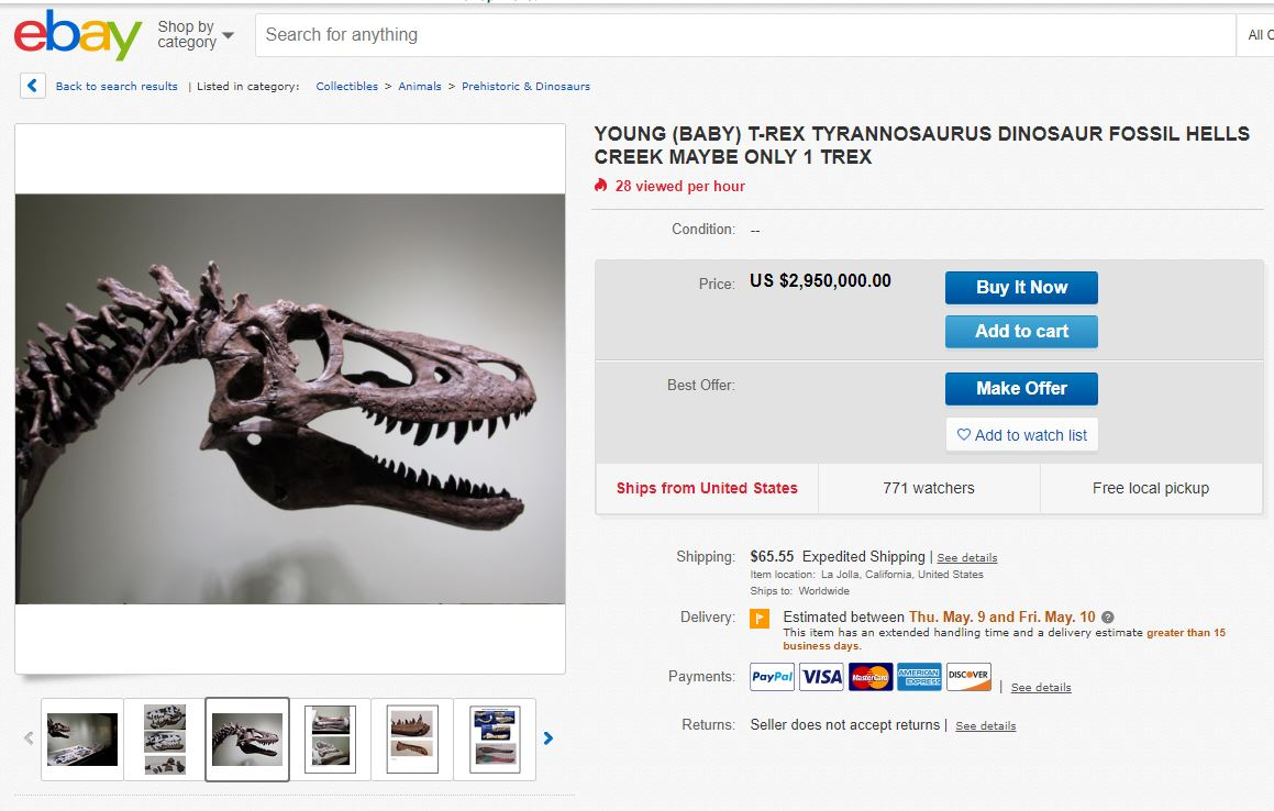 Rare baby T. rex skeleton listed on eBay for $3M infuriates paleontologists