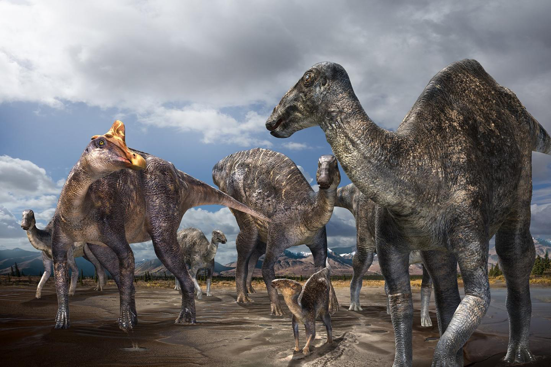 Minute by minute accounts of how asteroid that wiped out the dinosaurs devastated Earth