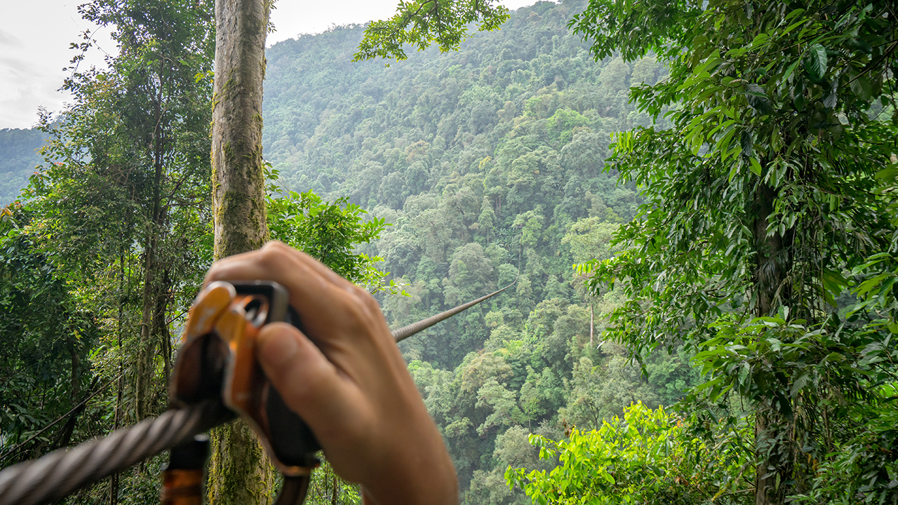 Westlake Legal Group iStock-zipline Canadian man dies after zipline cable snaps in Thailand Kathleen Joyce fox-news/world/world-regions/canada fox-news/world/world-regions/asia fox-news/world/world-regions/americas fox news fnc/world fnc article a471530d-32e3-5408-a833-cf5e2097c893