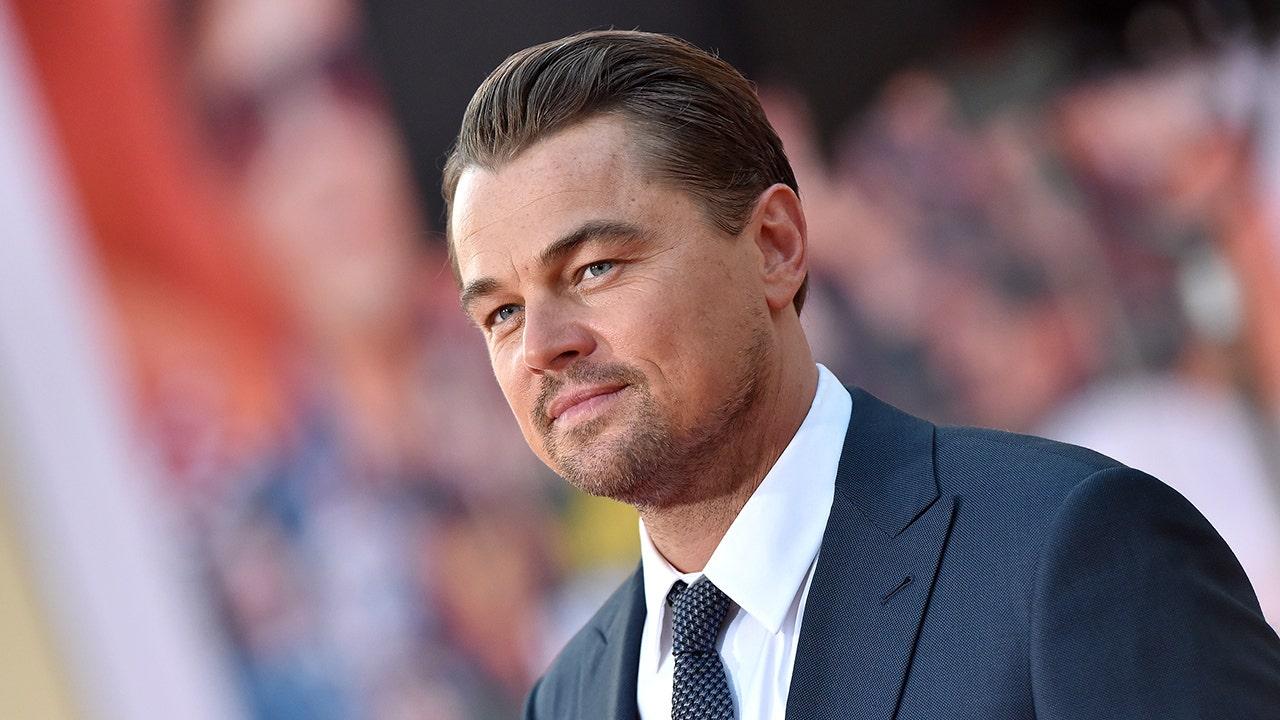 Leonardo DiCaprio responds to Brazilian president's claims he funded Amazon fires