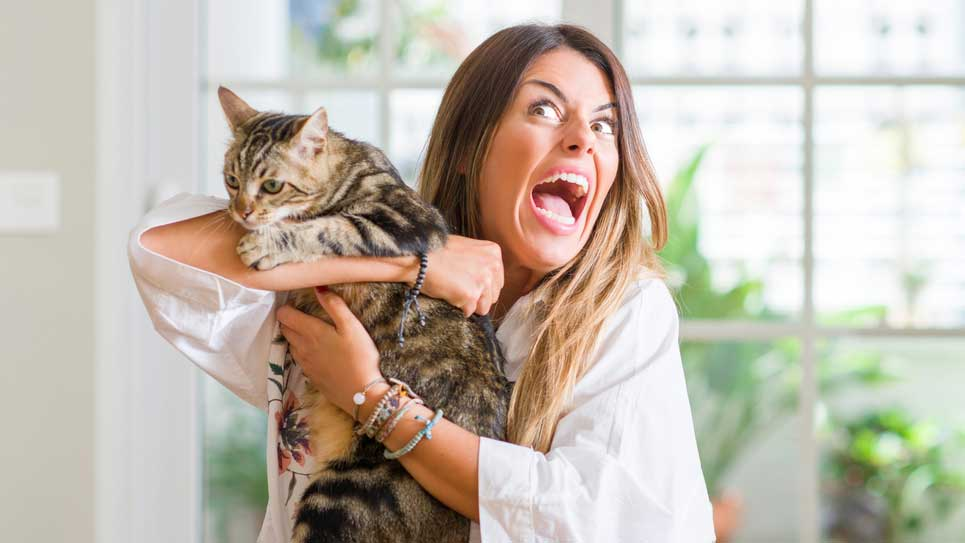 'Crazy cat lady' stereotype has no evidence to support it, study finds