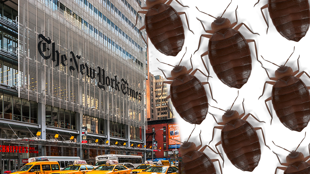 New York Times newsroom hit by bed bug infestation: report