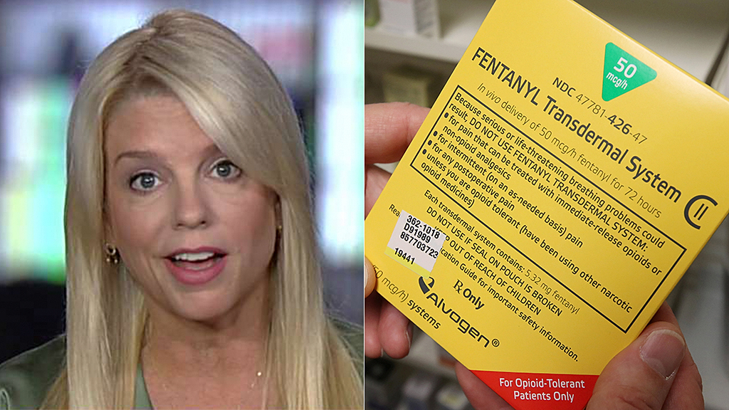 Pam Bondi: Fentanyl shipment from China, seized in Mexico, could have 'wiped out a small state'