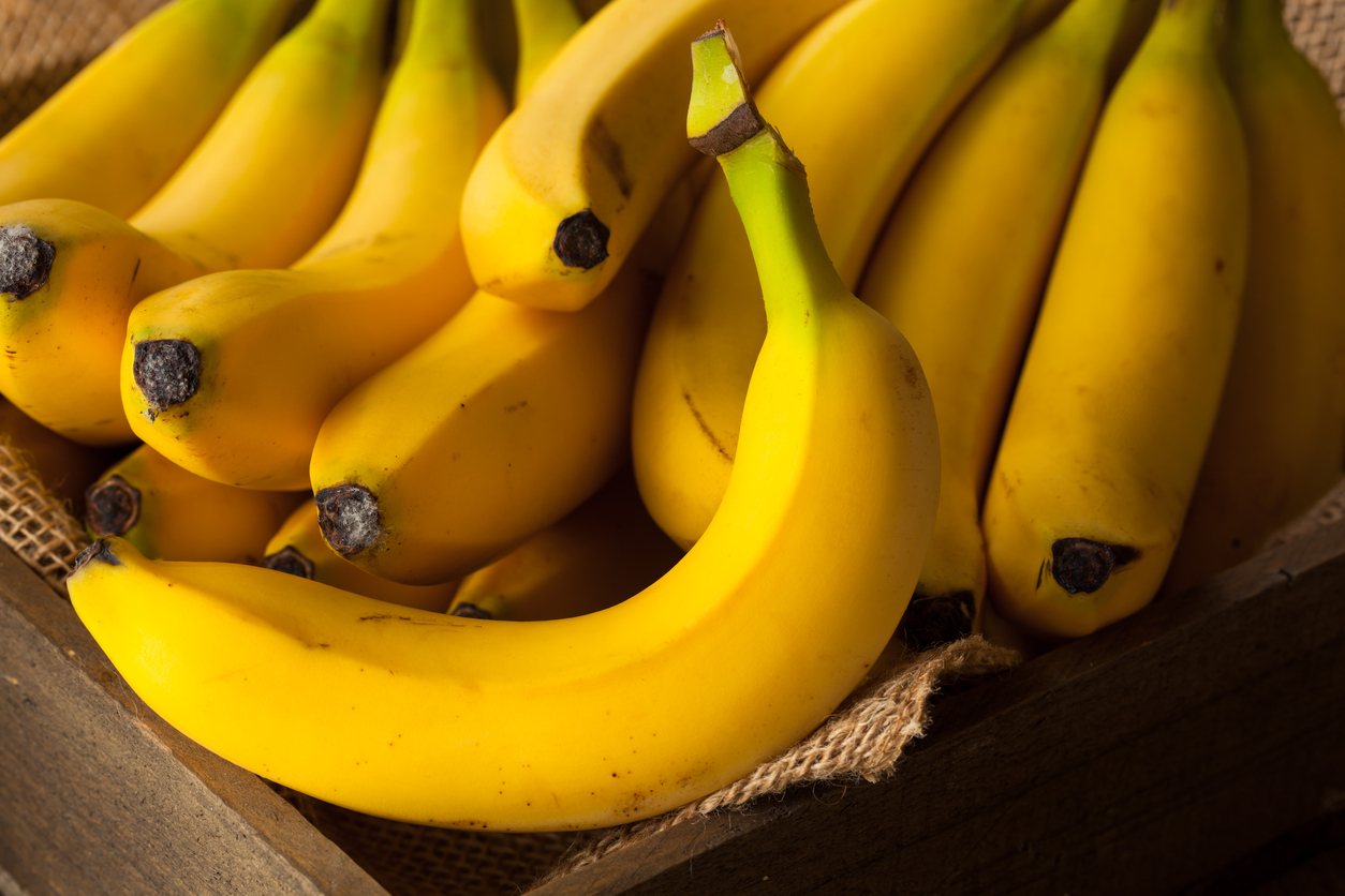 Westlake Legal Group bananas-istock-medium Banana-targeting fungus may cause 'apocalyptic scenario' for the fruit Michael Hollan fox-news/world/world-regions/latin-america fox-news/food-drink/food/snack-foods fox news fnc/food-drink fnc article ad0f6fb3-f07f-530e-bc27-ad7df3b2799b