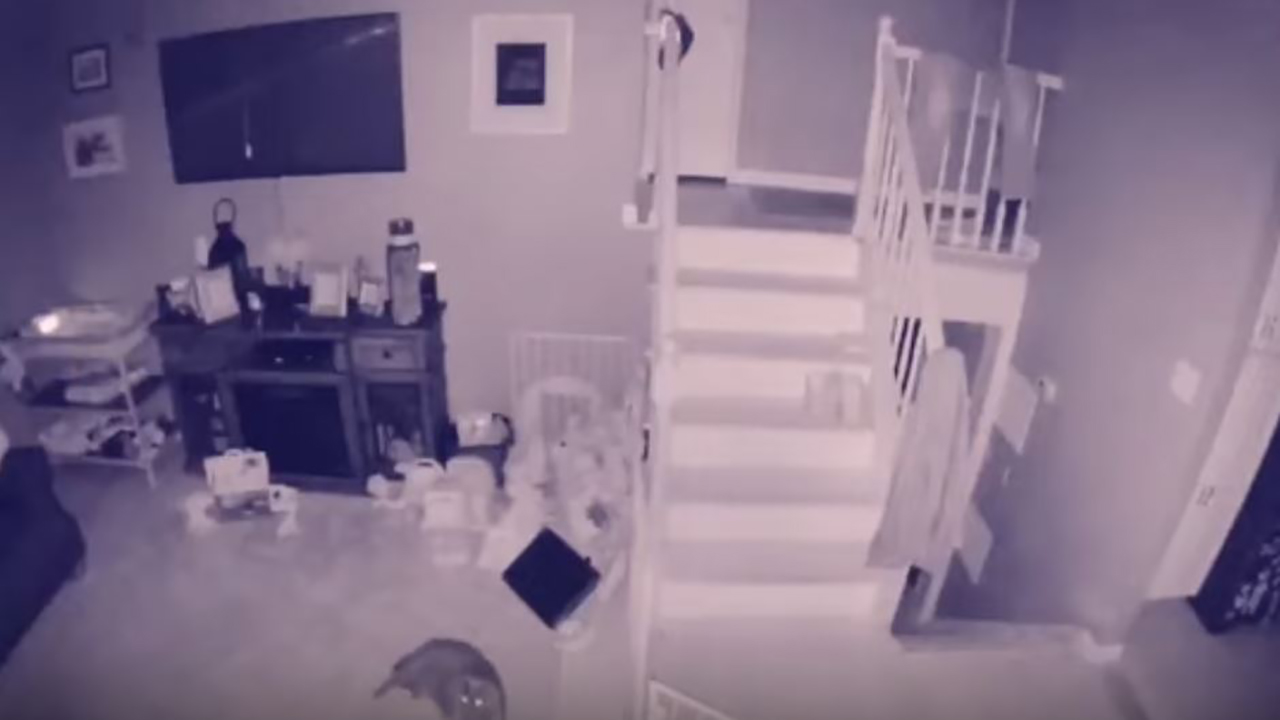 Westlake Legal Group ghost New York home security camera catches a 'ghost' with 'pet' fox-news/us/us-regions/northeast/new-york fox-news/entertainment/genres/viral fox news fnc/us fnc cb37b54a-a001-55c2-9253-09a57bc3a063 Brie Stimson article