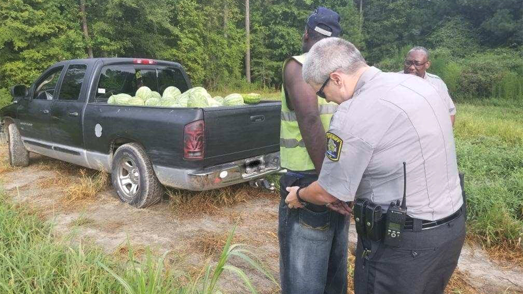 Suspected NC watermelon thief's getaway foiled by mud