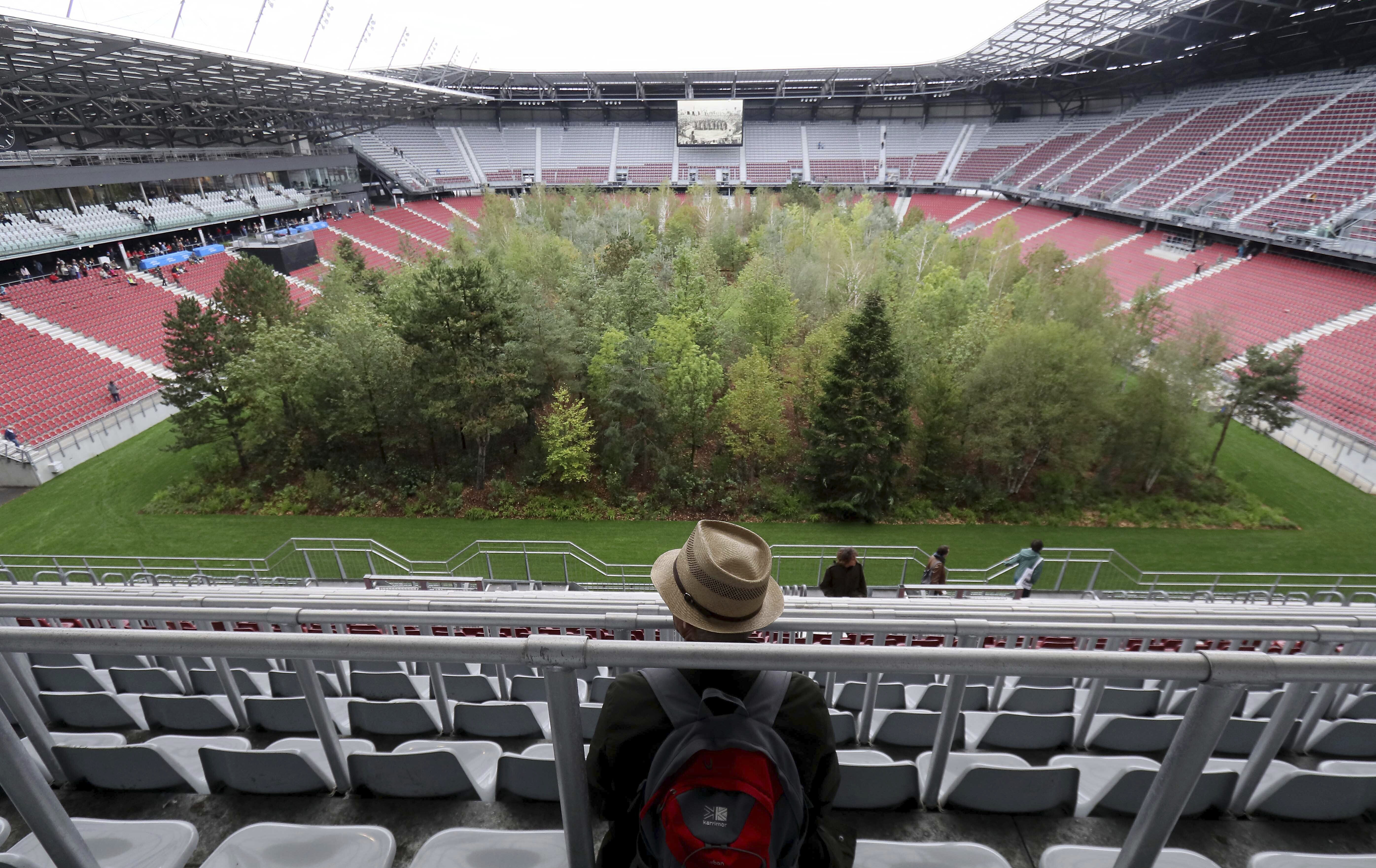 Soccer stadium turned into 'forest' as artist highlights climate change