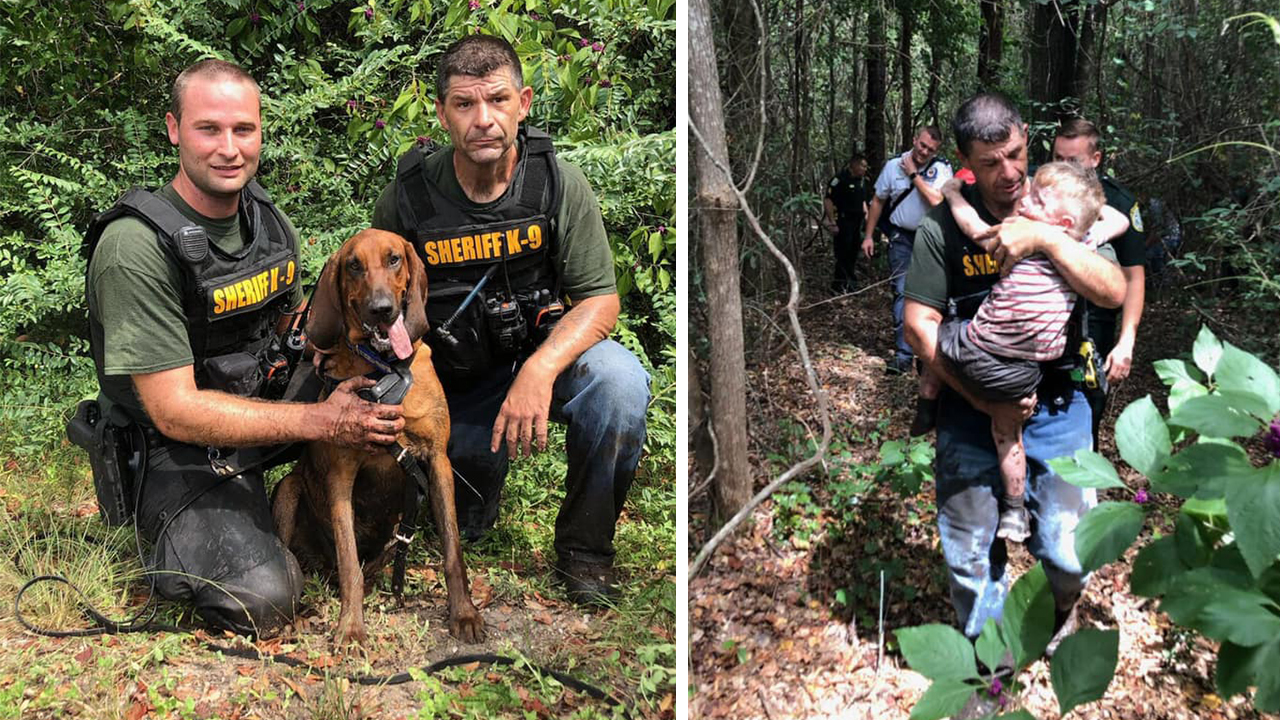 Westlake Legal Group Boy-rescue Florida police dog sniffs out missing autistic child, 3, in under 30 minutes Morgan Phillips fox-news/us/us-regions/southeast/florida fox-news/us/us-regions/southeast fox-news/us/crime/police-and-law-enforcement fox news fnc/us fnc article 533c41b3-9b6d-5c00-9b62-3772509c4ac1
