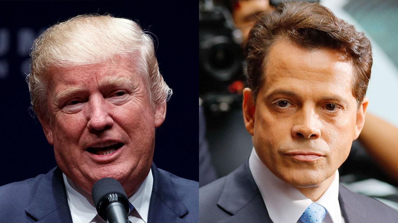 Scaramucci sagt Trump nicht im frühen Stadium der Demenz, aber 'early-stage-Faschismus'