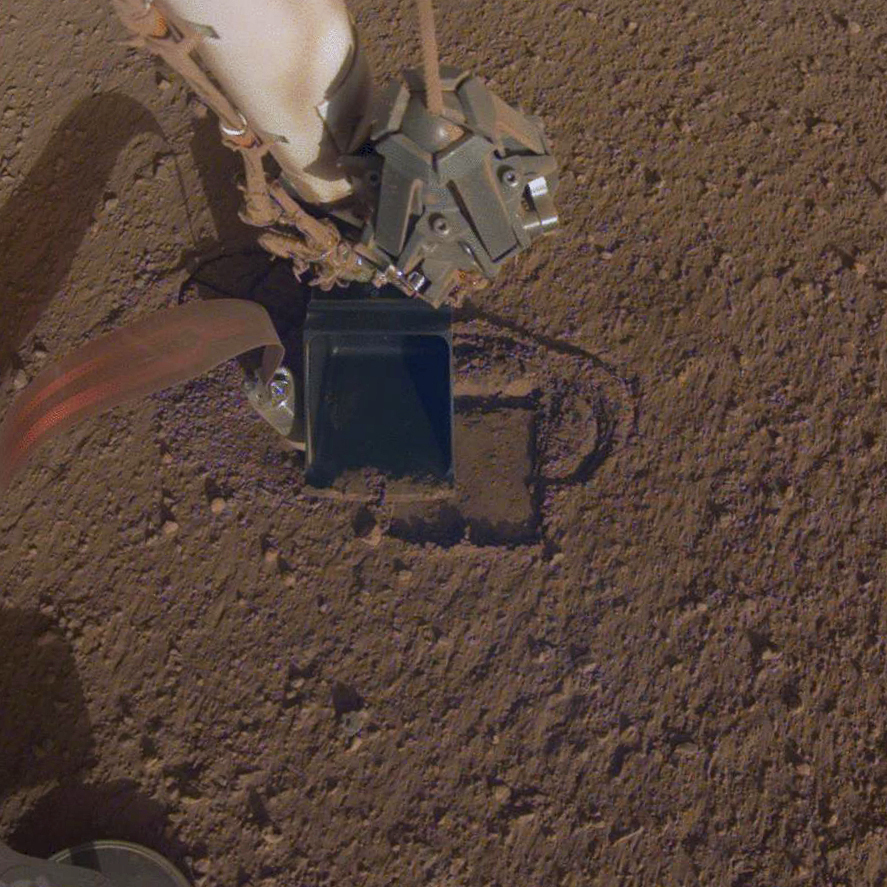 NASA denies there are living 'insect- and reptile-like creatures' on Mars