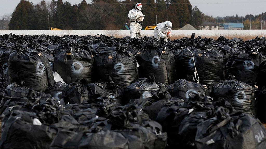 Typhoon Hagibis swept away Fukushima nuclear decontamination waste bags into river
