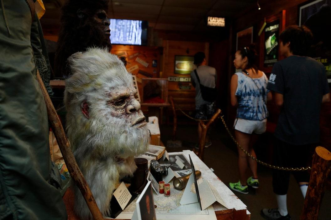 Georgia museum devoted to Bigfoot
