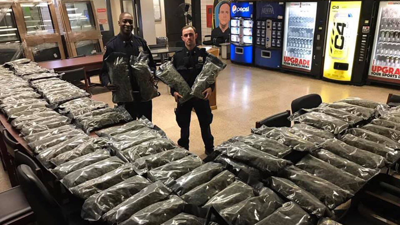 Pot or hemp? NYPD bust highlights growing drug confusion