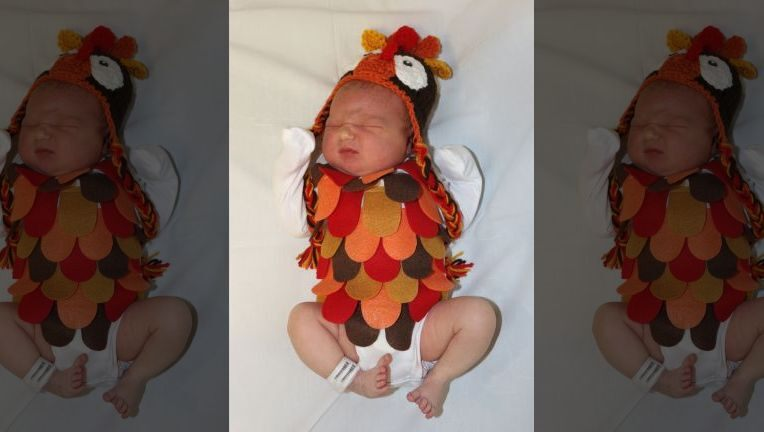 Newborns dressed as Thanksgiving dinner, sides in Texas hospital photo shoot