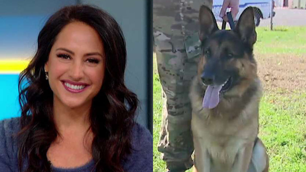 Westlake Legal Group Emily-Puppy-FOX Emily Compagno visits military dogs at Fort Dix training center, becomes fake bait Julia Musto fox-news/us/personal-freedoms/proud-american fox-news/us/military fox-news/shows/fox-friends-weekend fox-news/media/fox-news-flash fox news fnc/media fnc ce8df223-4ed2-51e2-97b6-8072ae193ff0 article