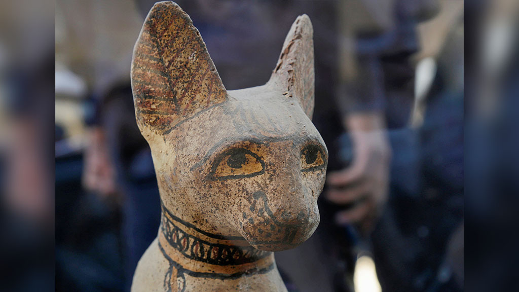 Cache of mummified cats, lions recently discovered on display at Egyptian pyramid site