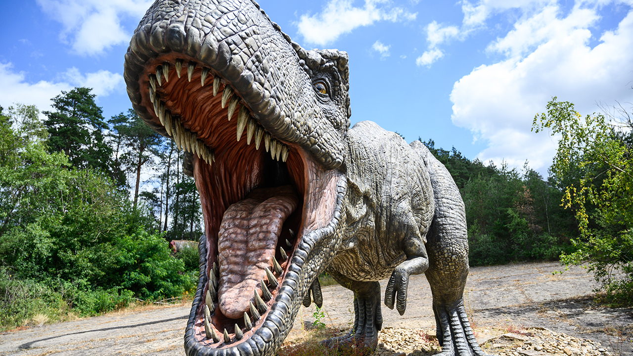Newly-discovered carnivorous dinosaur terrorized the tyrannosaurs
