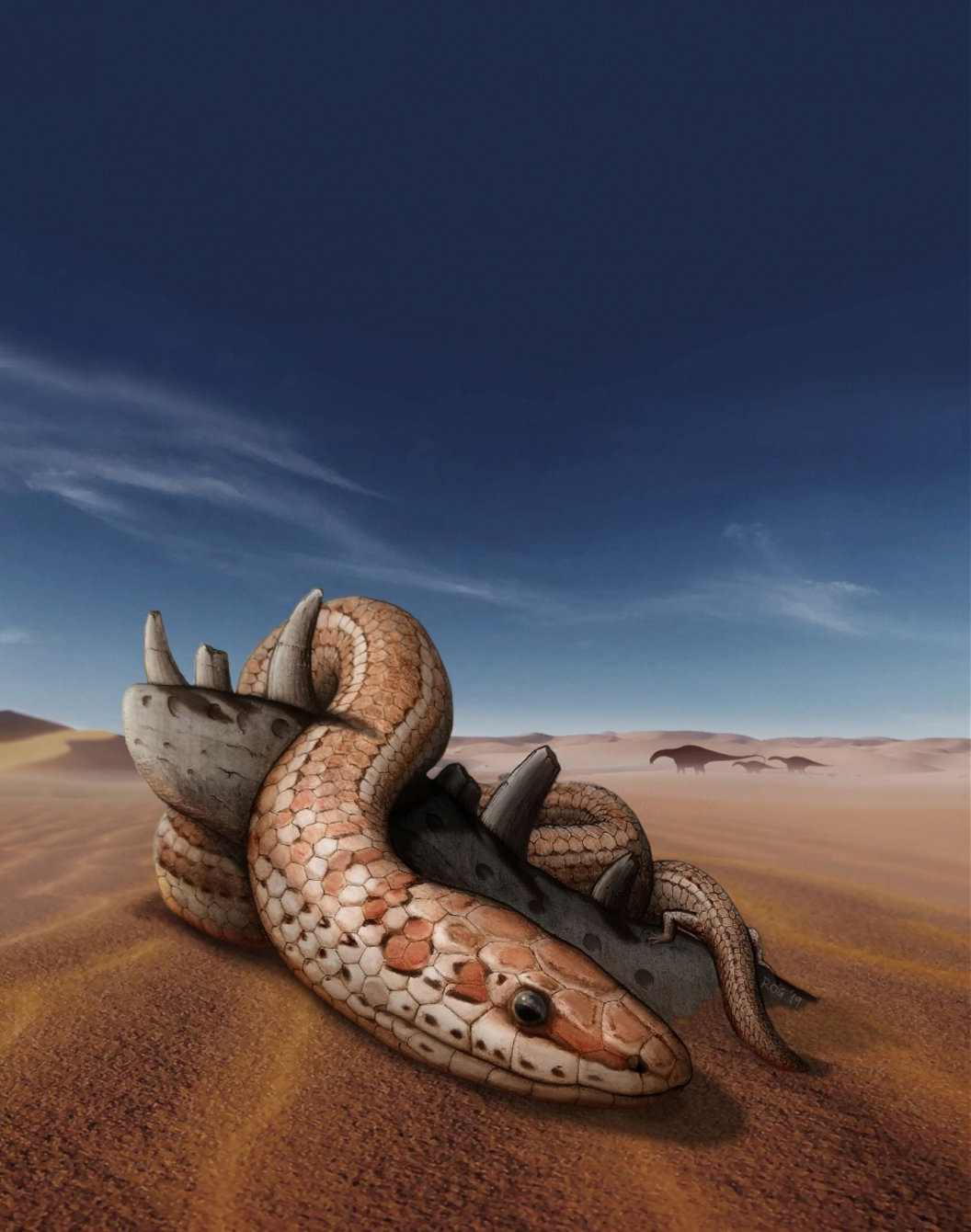 Prehistoric snakes had limbs for 70M years, new study shows