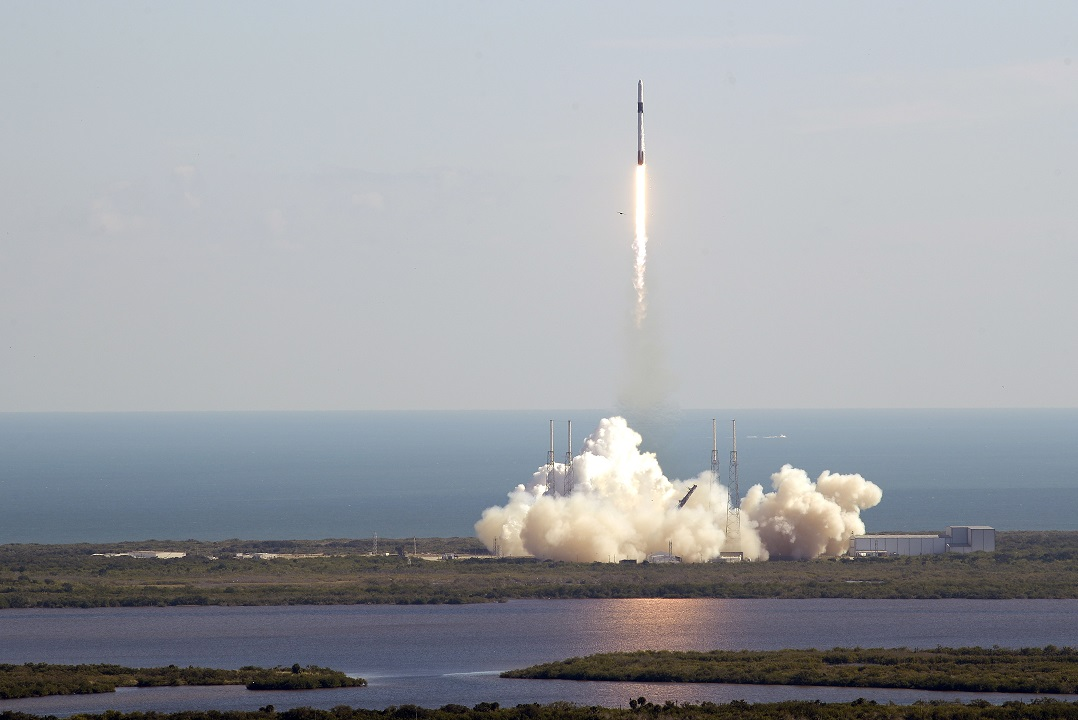 SpaceX launches payload of 'muscle mice,' barley grains to space station