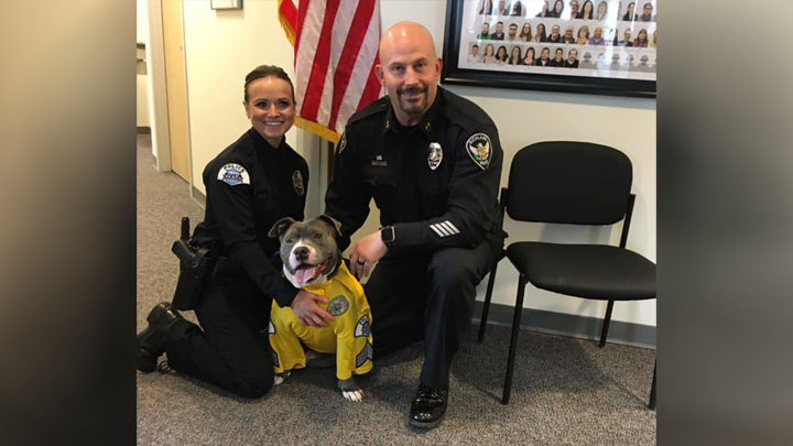 Westlake Legal Group Eddie-Spaghetti Terminally ill dog made honorary police K-9 Michael Hollan fox-news/us/us-regions/northeast/pennsylvania fox-news/lifestyle/pets fox news fnc/lifestyle fnc article 3fc86ea5-8fa7-5dd3-aec3-57c6eba9387f