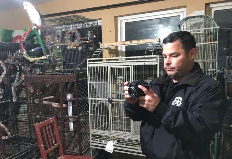 Westlake Legal Group HOUSTON Nearly 200 animals rescued from Texas home, including rabbits, turkeys, exotic birds fox-news/us/us-regions/southwest/texas fox news fnc/us fnc Bradford Betz article ade2d5ee-99ac-5711-bb4d-fba1dd152dbf