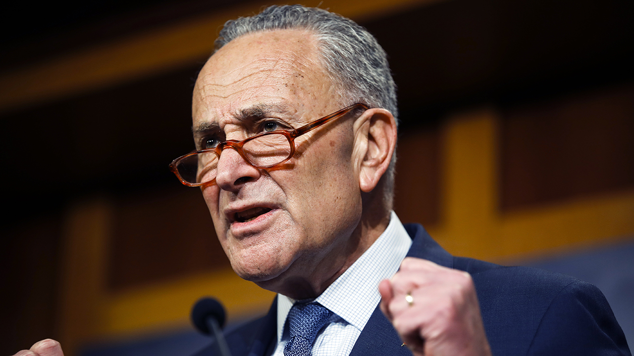 Schumer blasts Trump for remarks on 'blue state' coronavirus deaths: 'How low can he go?'