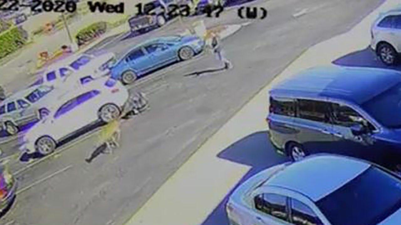 North Carolina man run over by deer in McDonald's parking lot