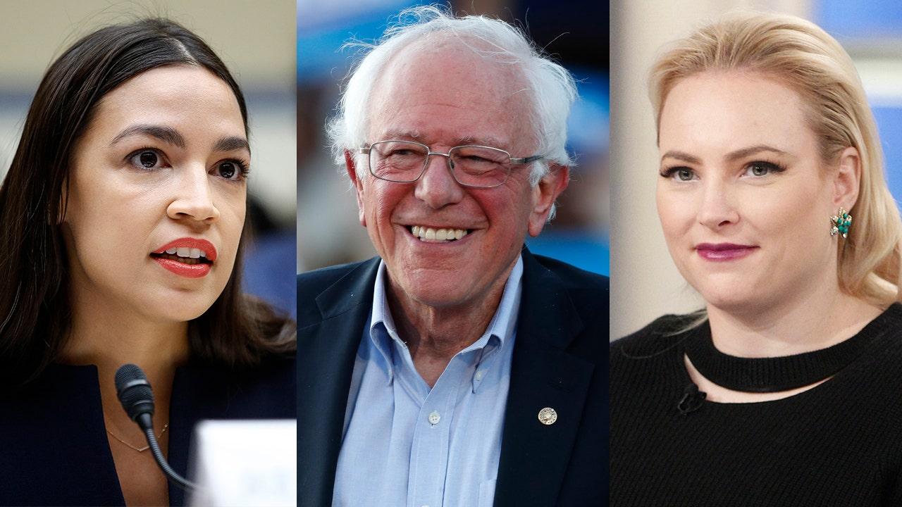 Meghan McCain challenges AOC on 'misogynistic' Bernie Bros: Sanders isn't 'doing enough'