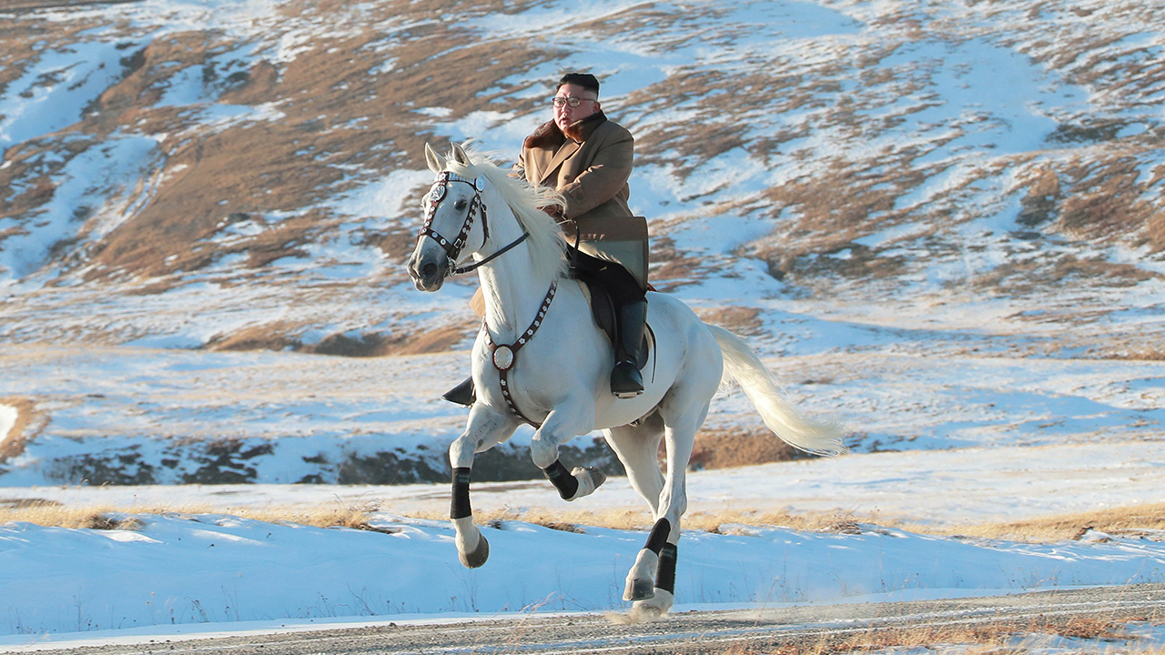 Kim Jong Un spent over $500G on Russian horses over past decade, data show