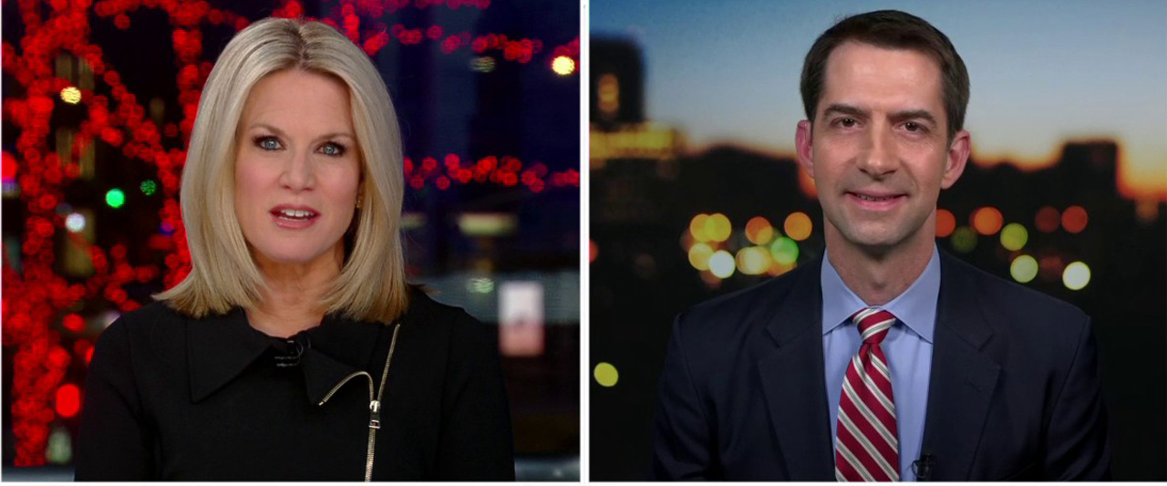 Westlake Legal Group MacCallumCotton Sen. Tom Cotton stands by startling theory on coronavirus origins: 'We need to be open to all possibilities' Yael Halon fox-news/shows/the-story fox-news/media/fox-news-flash fox-news/health/infectious-disease/coronavirus fox news fnc/media fnc article a7888d0c-97d6-535a-8ac3-2a7cc03187ea