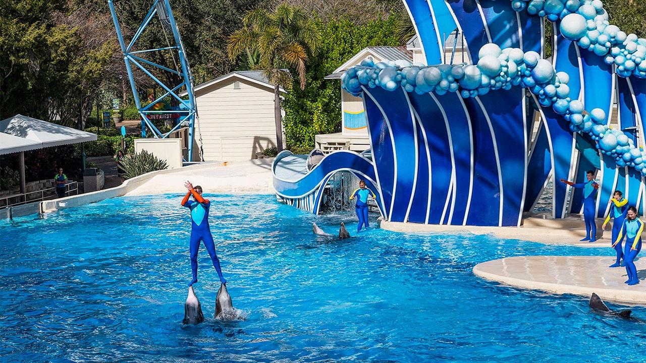 SeaWorld-Trainer wird nicht mehr fahren Delfinen in Vergnügungsparks